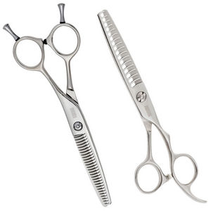 Passion 2 Step Thinning Scissors
