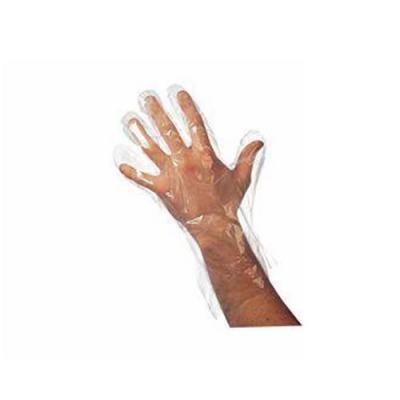 Agenda Disposable Gloves (x 100)
